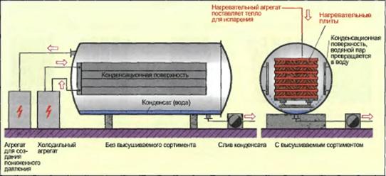 Процесс сушки древесины в вакуумной камере